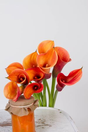 Orange Calla lilies(Zantedeschia) with orange and pumpkin marmalade over white  photo