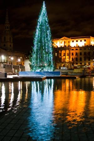 Christmas tree by night in Trafalgar Square, London, UK on 06 December 2011 Stock Photo - 11828258