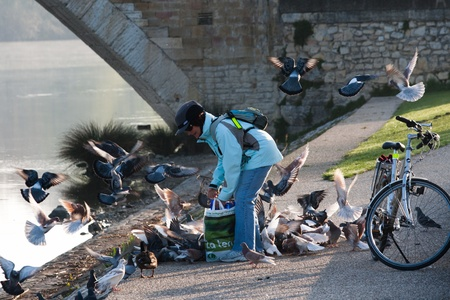 spanned: Lady feeding pigeons by Le Pont d�Avignon  Pont St-B�nezet , built between 1171 and 1185, originally spanned Rh�ne River between Avignon and Villeneuve-l�s-Avignon, Provence, France