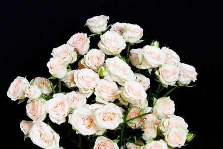 Bouquet of pink roses over black background photo