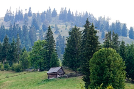 Hiking on Ceahlau, Carpathian  Carpati  Mountains, Romania photo