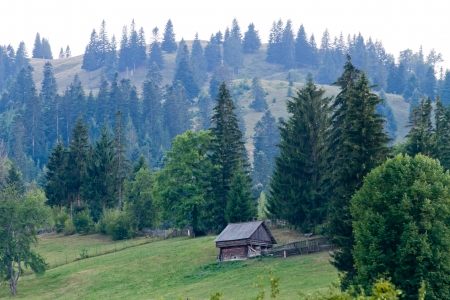 Hiking on Ceahlau, Carpathian  Carpati  Mountains, Romania photo
