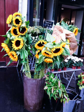 Sunflowers for sale in flower shop in Paris on rainy day Stock Photo - 26123662