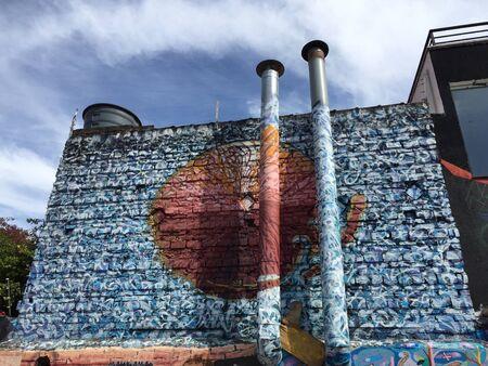madalena: Graffiti on the walls of Vila Madalena neighborhood on May 23 2015 in Sao Paulo Brazil Stock Photo