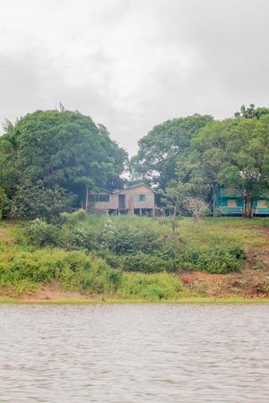 Life in a lagoon on Rio Negro in the Amazon River basin, Brazil, South America Reklamní fotografie