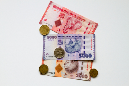 Colourful background of mixed banknotes and coins of Tanzanian Shilling with endangered wildlife on the back