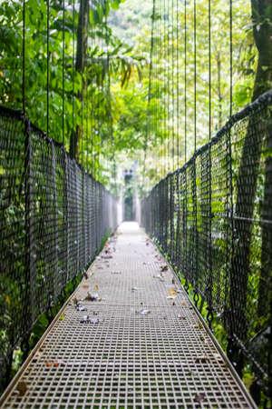 "View of the hanging bridges in ""Mistico Arenal Puentes Colgantes"" park in Arenal region, Costa Rica"