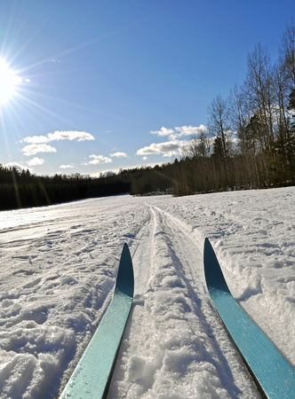 ski track: Cross country skiing