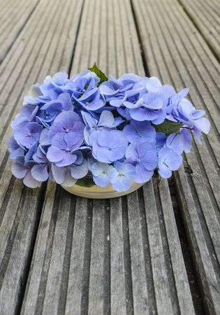 Bouquet of beautiful blue hydrangea on the gray rustic wood photo