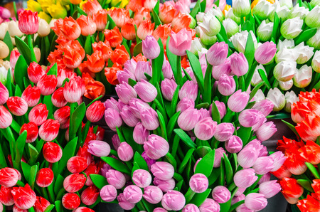 specific: Traditional wooden colorful tulips at souvenir shop in Amsterdam, Netherlands Stock Photo