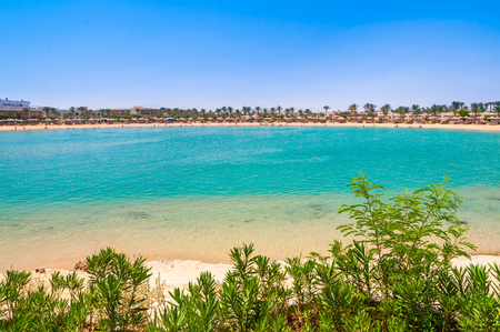 Landscape of tropical beach in lagoon with palm trees in Egypt