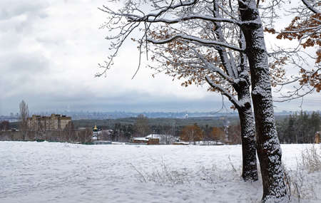 Edge of the forest on a hill in the suburbs. In the distance be visible the big city. Land and tree branches covered with snow. On the branches of the oak remained yellowed leaves.