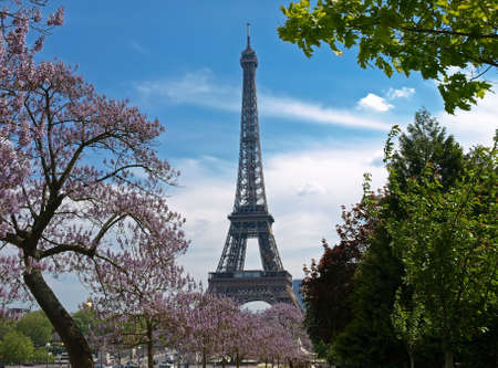 The Eiffel Tower in spring among blossoming trees. Paris, France. Stock Photo - 18244582