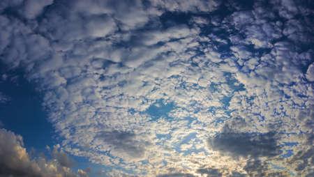 altocumulus: Summer panorama of blue sky with altocumulus clouds