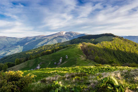 mountain ranges: Landscape with mountain ranges, forested slopes, mountain pasture with buildings summer farm, snowfields on top of the ridge and sky. Carpathians. Stock Photo