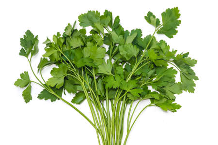 Bunch of fresh green parsley on a light background. Isolation. Stock Photo