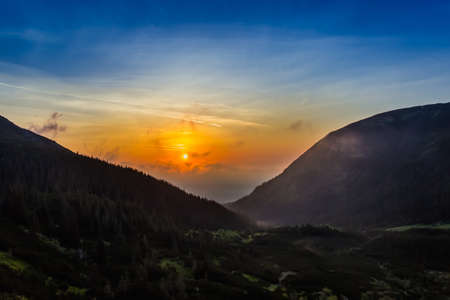 forested: Sunrise in the valley with forested slopes. Carpathians.