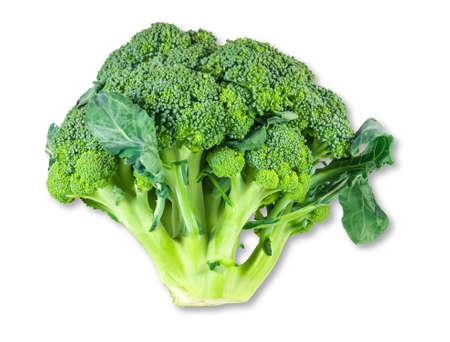 Head of fresh broccoli on a light background. Isolation.