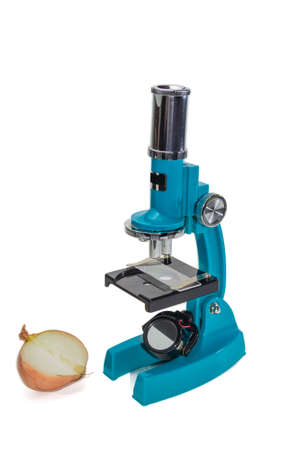 bisected: Specular microscope for schoolboy with a blue hull and bisected the onion as an object of study on a light background. Isolation.