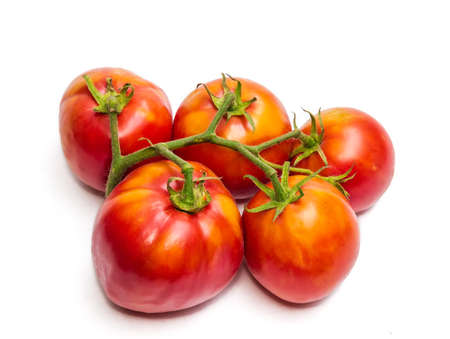 fascicule: Bunche of red-orange tomatoes on a light background. Isolation.