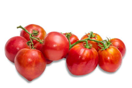 fascicule: Two bunches of red-orange tomatoes on a light background. Isolation. Stock Photo