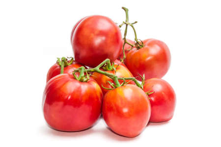 fascicule: Several bunches of red-orange tomatoes on a light background. Isolation. Stock Photo