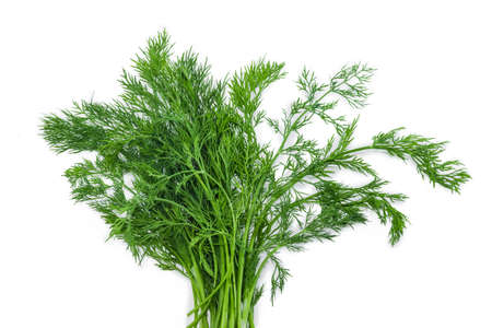 greenness: Bunch of fresh green dill on a light background. Isolation. Stock Photo