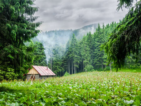 Small wooden mountain shelter in a small clearing in the forest during inclement weather. Carpathians