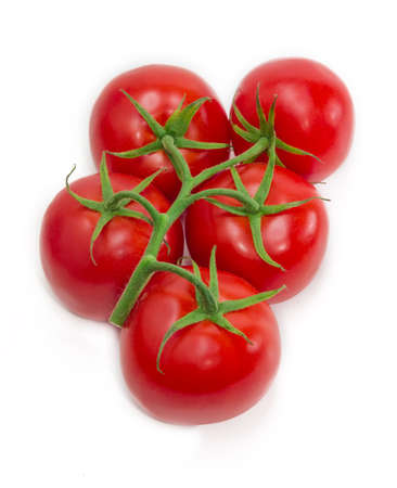 fascicule: Branch with a red ripe tomatoes on a light background. Isolation.