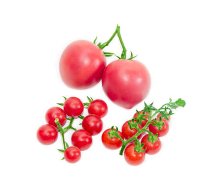 fascicule: Two branches of ripe red cherry tomato and two conventional tomatoes on a light background. Isolation. Stock Photo