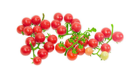 fascicule: Several clusters of ripe red cherry tomato on a light background. Isolation. Stock Photo