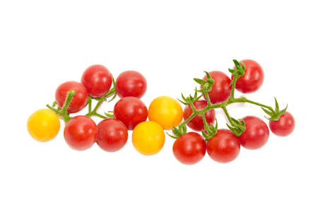 fascicule: Two branches of ripe red cherry tomato and several yellow cherry tomato on a light background. Isolation.