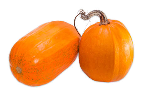 haulm: Two yellow-orange pumpkin with haulm on a light background. Isolation.