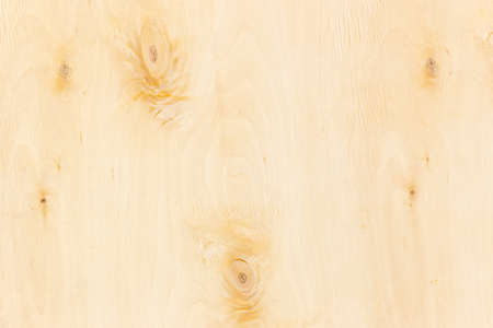 hardwoods: Surface of birch rotary cut veneer closeup. Texture. Stock Photo
