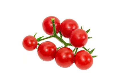 fascicule: Branch of ripe red cherry tomato on a light background. Isolation.