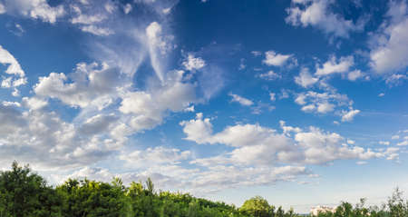 wetness: Sky with cumulus clouds and cirrus cloud on a background of trees summer in afternoon