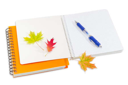 school notebook: Two notebooks with yellow cover and spiral binding, one of which is disclosed, blue ball pen and a few red and yellow autumn leaves on a light background. Stock Photo