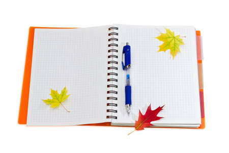 legal pad: Disclosed notebook with squared paper, yellow cover and spiral binding, blue ball pen and a few red and yellow autumn leaves on a light background. Stock Photo