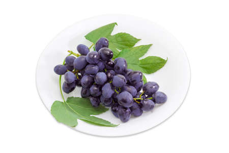 gocce di acqua: Cluster of dark blue table grapes with a drops water and a branch with a leaves on a white dish.