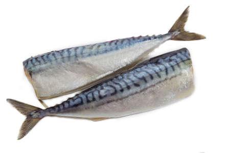 carcass: Twee karkas van een gestripte headless atlantische makreel, ingelegd met zout op een lichte achtergrond Stockfoto
