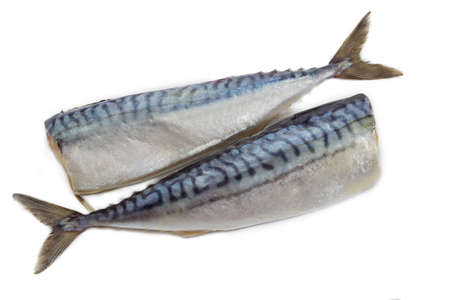 gutted: Two carcass of a gutted headless atlantic mackerel, pickled with salt on a light background Stock Photo