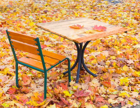 Table and a few autumn leaves on it and chair of summer open air cafe among the fallen leaves autumn