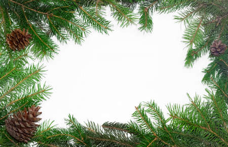perimeter: Fir branches with cones, laid out on the perimeter, as a frame with empty center part on a light background