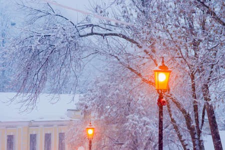 Street lamp on background of branches under snow during a heavy snowfall in winter eventide
