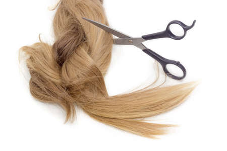 strand of hair: Hairdressers scissors against the backdrop of strand of female hair on a light background.