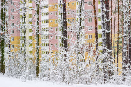 multi story: View on the modern highrise apartment building through snowy forest cloudy day