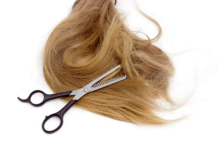 attractiveness: Specialized type of hairdressers scissors - thinning shears  against the backdrop of strand of female hair on a light background.