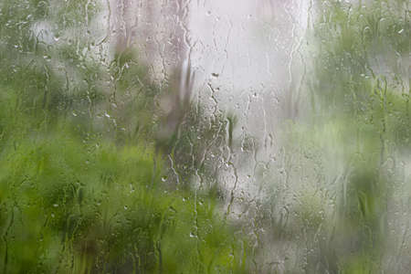 downpour: Background from a streams and drops of water on window pane and blurred foliage through the glass during a downpour