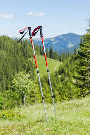 hillwalking: Pair of trekking poles made from three aluminum sections on a background of forested mountains