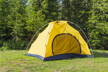 hillwalking: Yellow inner tent of a hiking dome tent with flexible poles in a clearing on the background of a spruce forest